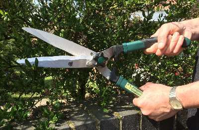 Garden Tools tested and reviewed by Fred In The Shed